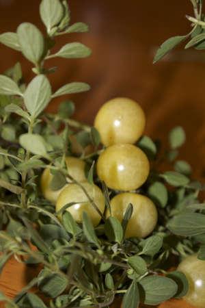 Yellow Tomato and herbs Stock fotó