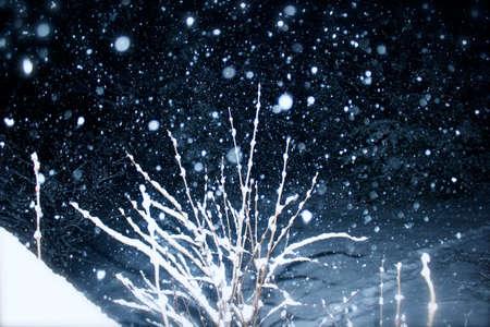Snow falling Imagens