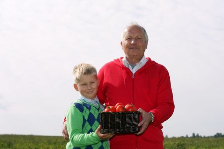 Grandfather and grandson with basket of tomatoes photo
