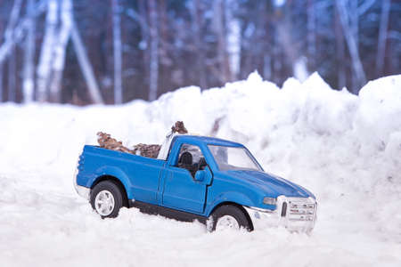 A toy. Blue pickup truck in winter forest in snowdrift. Carrying fir cones in the back of a car body