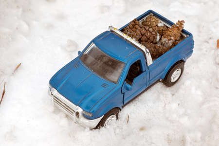 Blue toy pickup truck in winter forest on the road. Carrying fir cones in the back of a car body Stock Photo
