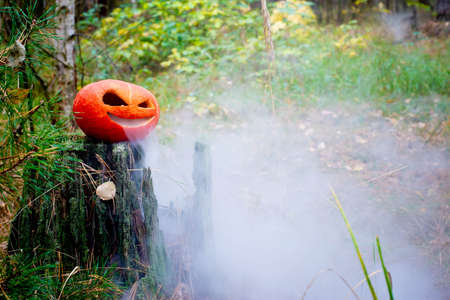 Halloween pumpkin in the autumn forest on an old stump. Jack lantern with steam from the mouth. In smoke or fog. Vaping vegetable