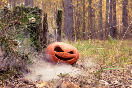Pumpkin halloween symbol in the autumn forest. Next to an old rotten stump covered with moss. Warm toned and with smoke or fog on the ground