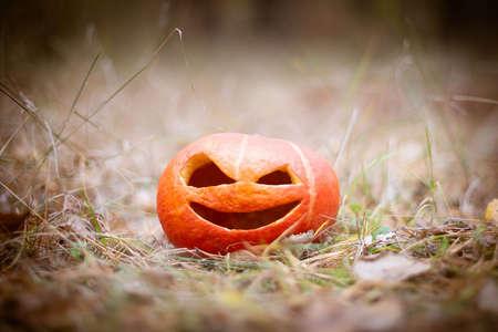 Orange Pumpkin halloween symbol in the autumn forest. Jack o lantern on the grass in brown tones