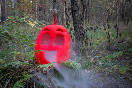 Pink colored Halloween pumpkin in the autumn forest on an old stump. Jack lantern with steam from the mouth. In smoke or fog.
