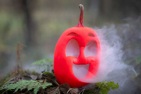 Halloween pumpkin in the autumn forest on an old stump. Jack lantern with steam from the mouth. In smoke or fog.