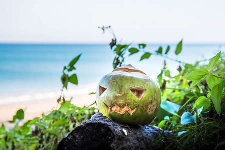 Fresh green coconut is a symbol of Halloween. On a wide tropical beach lies on the grass.