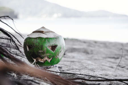 Fresh green coconut is a symbol of Halloween. With a carved face on a pumpkin. Lies on the grass on a wide sandy beach. Green and white toned