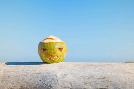 Fresh green coconut is a symbol of Halloween. Lies on a tree with a carved face like a pumpkin. Against the sky. Stock Photo