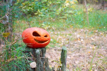 red orange Halloween pumpkin in the autumn forest on an old stump.