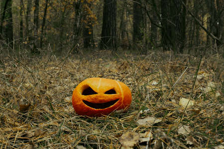 smiling halloween pumpkin viciously in autumn forest in dark colors
