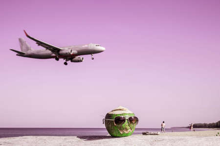 Green coconut wearing sunglasses on the beach Pumpkin shaped for halloween. Vacation concept. Take off plane in the background in defocus. Pink toned image.