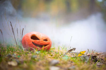 sinister and evil halloween pumpkin in autumn forest in smoke or fog. Jack o lantern on the grass
