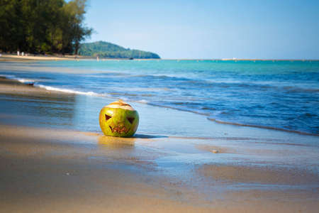 The symbol of Halloween in sun rays. Fresh green coconut like a jack lantern lies on the beach in sand against the backdrop of a tropical island Stock Photo - 130483884