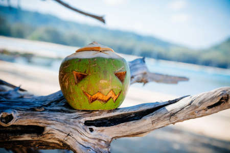 A halloween symbol carved from a young green coconut. Scary face like a pumpkin. stands on the branches of a tree against the background of a wide tropical beach. Sunny day. Holiday Vacation concept. Reklamní fotografie