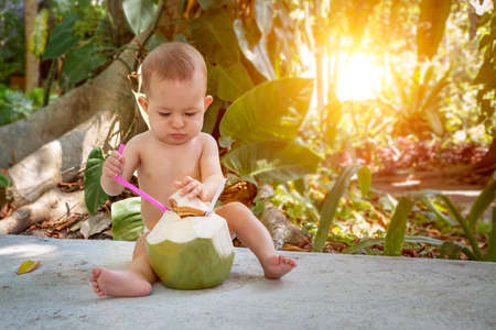 Pensive and passionate infant baby at tropical vacation. Eats and drinks green young coconut with spoon