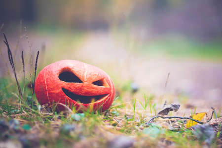 orange Pumpkin halloween symbol in the autumn forest on the grass. soft focus with blurred background Stock Photo