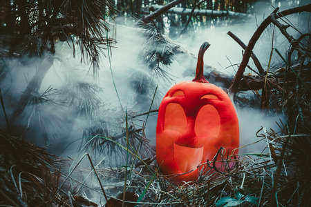 funny smile halloween pumpkin colored in pink  in autumn forest in smoke or fog. Jack o lantern on the needles of fir tree. Dark tones in vapor