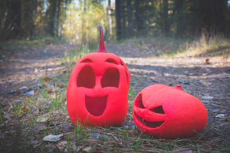Two pink halloween pumpkins in the autumn forest stand on a country road.