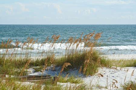 A scenic image of the beach. 版權商用圖片
