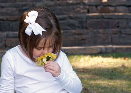 Cute little girl sniffing a yellow flower. photo