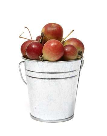 A metal bucket of crabapples on white.