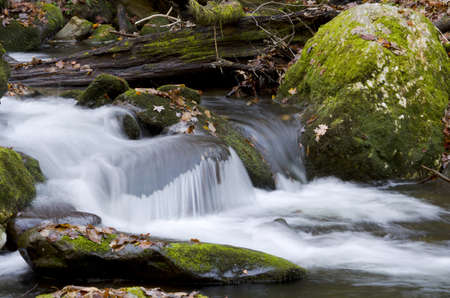 A stream flowing down a mountain in the Smokies. 版權商用圖片