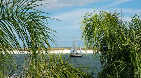gulf of mexico: A sailboat entering the bay at Orange Beach AL. Stock Photo