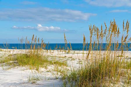 Une scène de plage sur la côte du Golfe Alabama. Banque d'images - 33319408