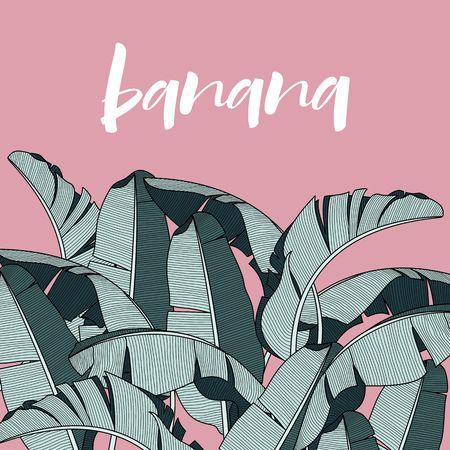 Achtergrond met banaanbladeren. Ontwerpafbeelding voor reclameboekjes, banners, flayers, kaarten. Stock Illustratie