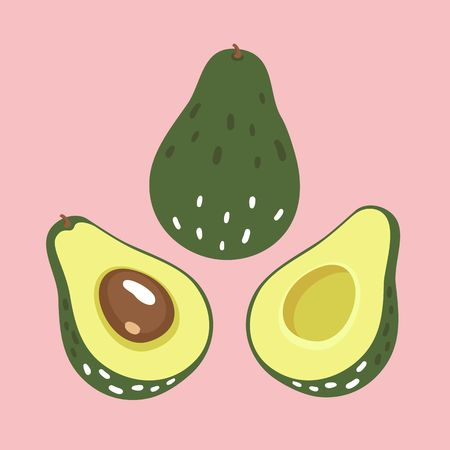 Vector set of fresh avocado.