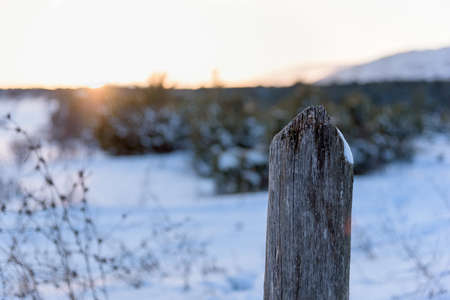 Close up of wooden pole winter landscape sunset