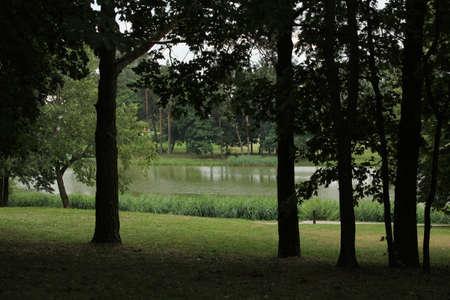 suspenso: Lago en el parque Foto de archivo