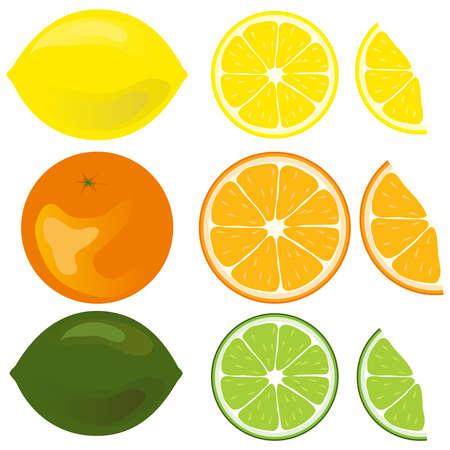 Icon citrus. Flat design, vector illustration, vector. Illustration
