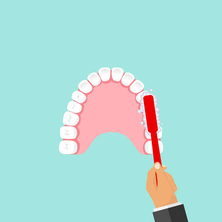 The toothbrush cleans teeth. Flat design, vector illustration, vector. Illustration