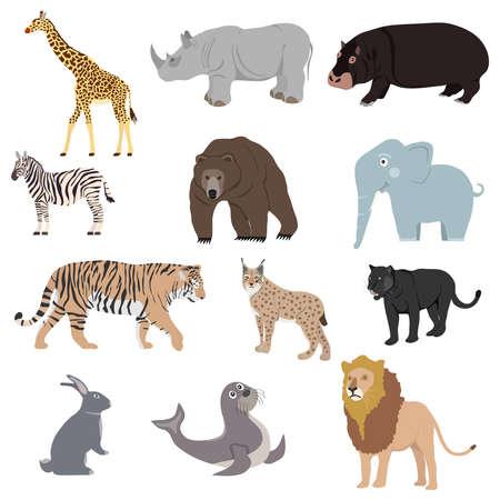 Animals, set of animals. Rhinoceros, lion, panther, lynx, giraffe, bear, zebra. Flat design, vector illustration, vector.