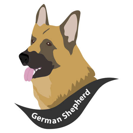 German Shepherd Dog, Dog Head, Dog. Flat design, vector illustration, vector. Vettoriali