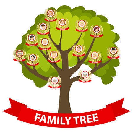 Genealogy tree, family tree with portraits of the family. Flat design, vector illustration, vector. Archivio Fotografico - 100400234