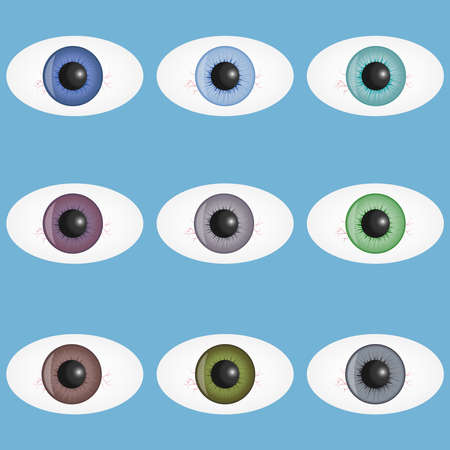 Human eyes, a set of realistic human eyes with pupils. Eyes of a person with capillary vessels. Flat design, vector illustration, vector.