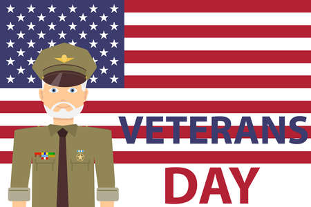Veteran's Day, a man in military uniform with awards on the background of the US flag. Flat design, vector illustration, vector.