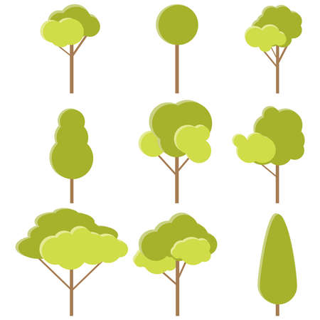 The trees. Set of realistic green trees isolated on white background. Vector, cartoon illustration of a green tree. Vector.