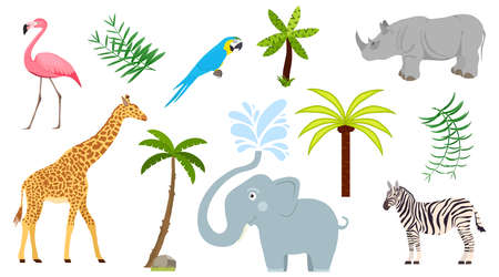 Tropical animals, trees and plants. Tropical world illustration. Vector illustration. Vector.