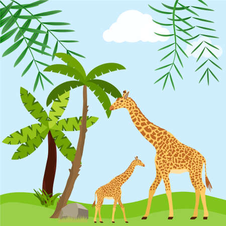 Giraffes on the background of a tropical forest, mother of a giraffe with a child. Vector illustration. Vector.