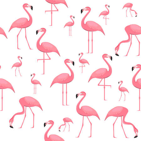 Flamingo, seamless wallpaper with flamingo birds on a white background. Vector illustration. Vector. Ilustração