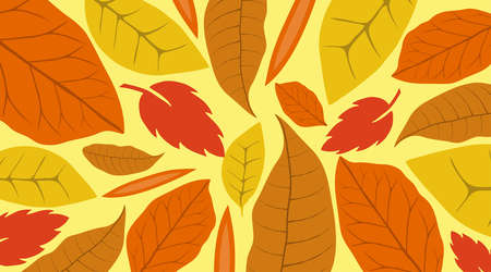 Autumn leaves background image. Horizontal banner with autumn leaves. Vector illustration. Vector. Illustration