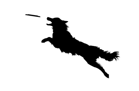 Vector Illustration of Isolated Real Looking Dog Jumping and Catching Disc. Silhouette on White Background. Vectores
