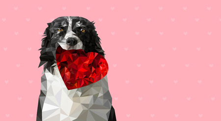 Low Poly Vector Illustration: Dog Holding Red Heart. Black and White Border Collie on Sweet Romantic Valentines Greeting Card, Wedding Announcement etc. Place for Your Text. Pink Background with Small Hearts.