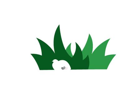 Bird with Eggs Hidden in Grass. Simple Vector Illustration.