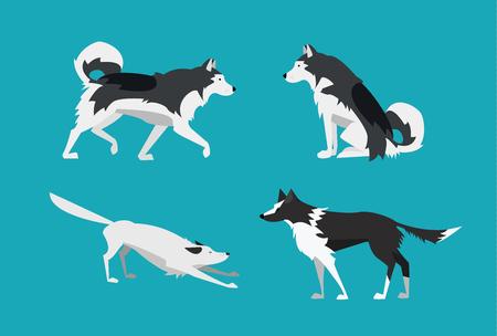 Vector Illustration. Set of Dogs in Flat Design Style. Alaskan Malamute and Border Collie. Stock Illustratie