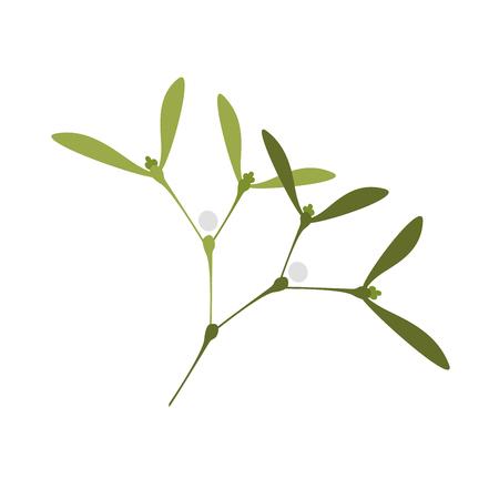 Simple Vector Illustration of Twig of Mistletoe, symbol of Christmas.